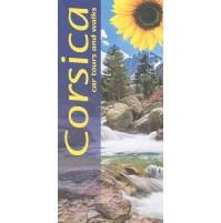 Corsica Sunflower