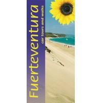Fuerteventura Sunflower