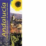 Andalucia and Costa del Sol Sunflower