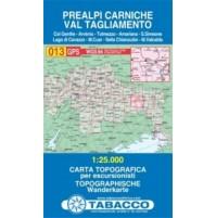 013 Prealpi Carniche - Val Tagliamento