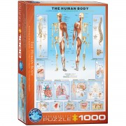 The Human Body Pussel 1000 bitar
