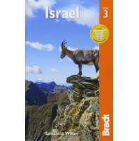 Israel Bradt