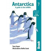 Antarctica A Guide to the Wildlife Bradt
