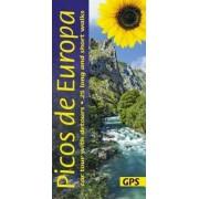 Picos de Europa Sunflower