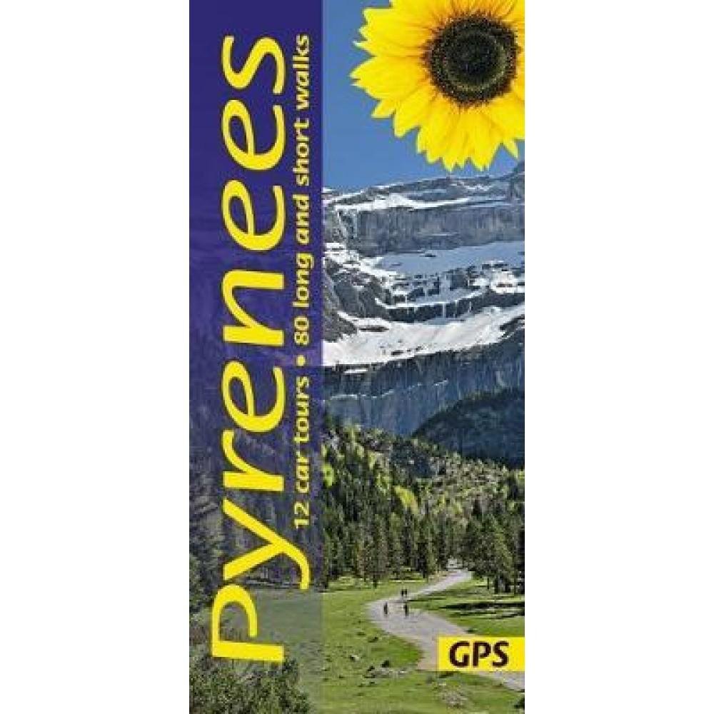 Pyrenees Sunflower