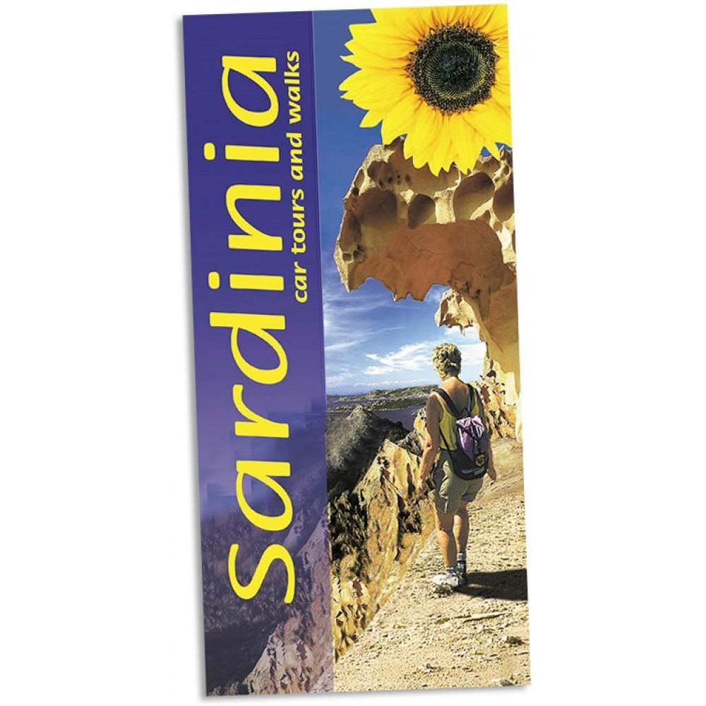 Sardinia Sunflower