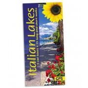 Italian Lakes Sunflower