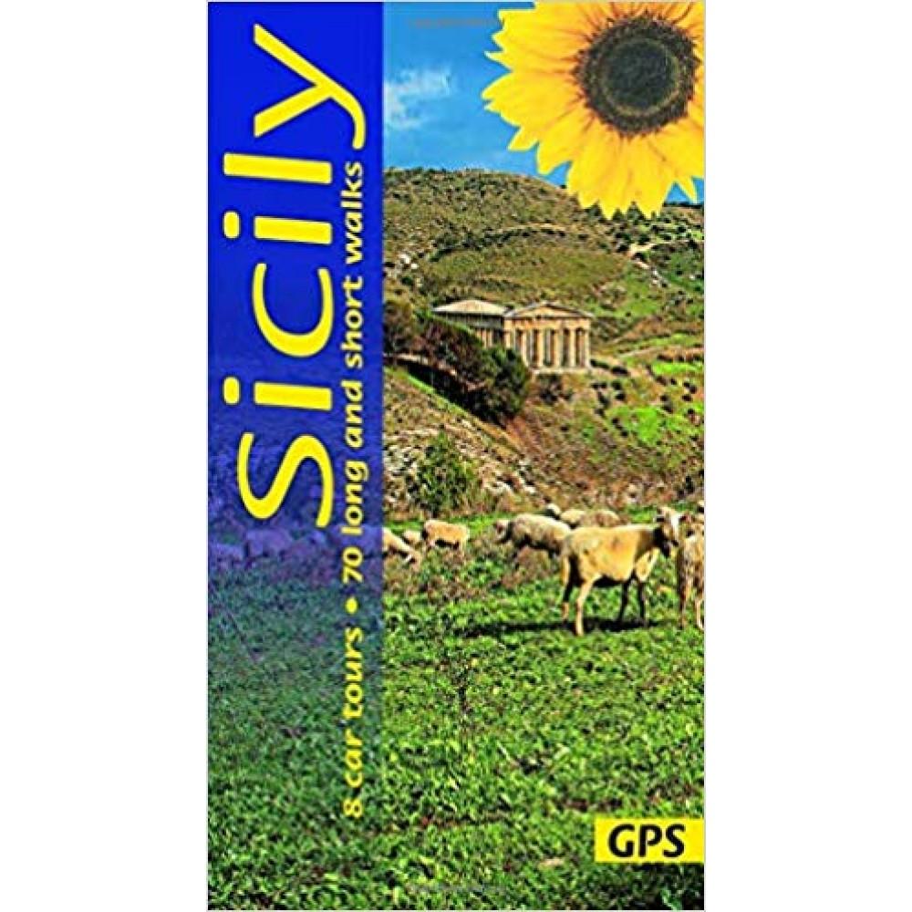 Sicily Sunflower