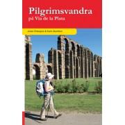 Pilgrimsvandra på Via de la Plata