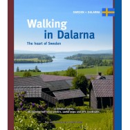 Walking in Dalarna