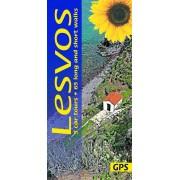 Lesvos Sunflower