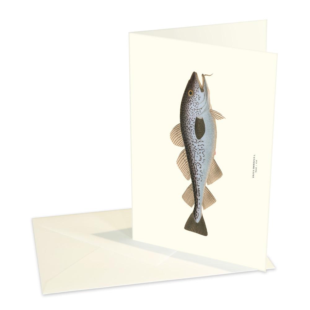 Vykort Torsk med kuvert