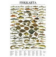 Fiskposter